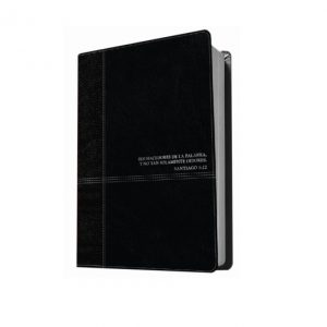 Biblia de estudio Diario Vivir RVR60