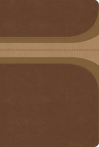 RVR 1960 Biblia de Estudio Arco Iris, canela/damasco, simil piel con indice
